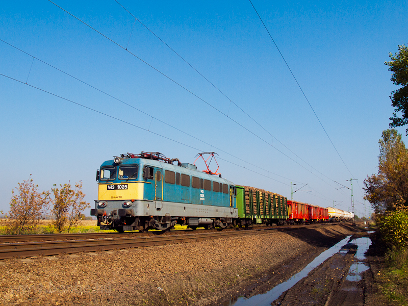 The V43 1025 seen hauling the local freight on line 80 near Hort-Csány photo