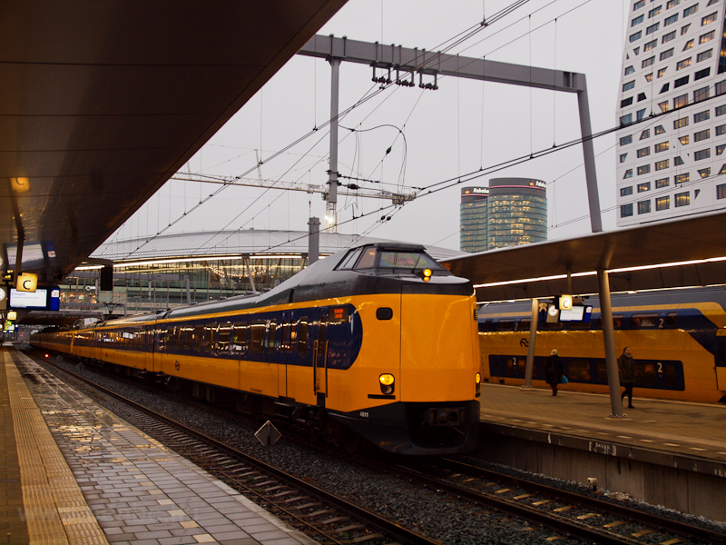 A Koploper seen at Utrecht picture