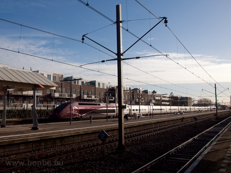 A Thalys at Rotterdam Zuid photo