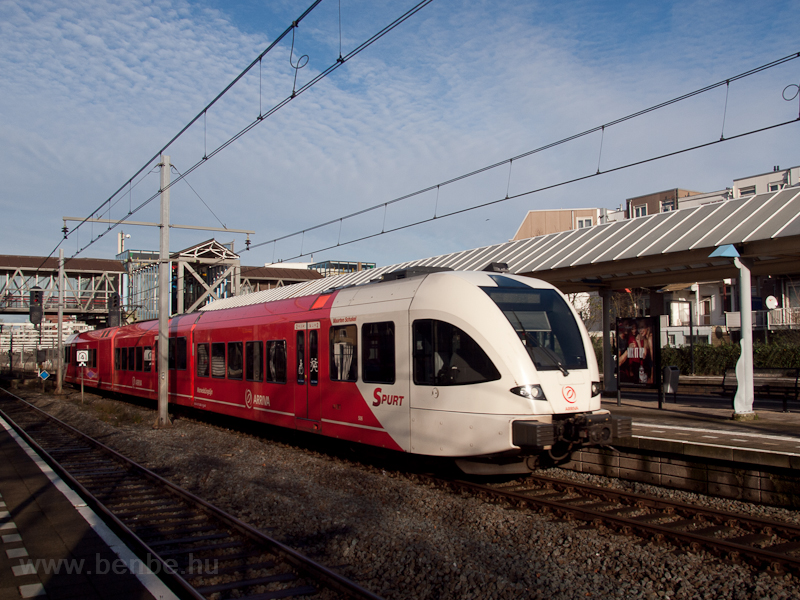 Arriva Spurt at Rotterdam Z photo