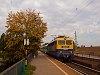 A MÁV-TR 431 311-es Papagáj egy Bmx-ekből álló vonattal az őszi Nagymaros-Visegrád állomáson