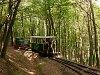 A Nagybörzsönyi Erdei Vasút C50 3756 Kisírtásnál