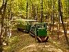 A Nagybörzsönyi Erdei Vasút C50 3756 Nagyírtásnál