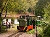 The Nagybörzsöny Forest Railway