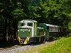 A photo charter with the Mk48 2015 on the Csömödér-Lenti narrow gauge forestry railway