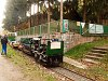 Track maintenance with volunteers on the Kemence Museum Forestry Railway.