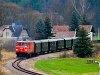 A NÖVOG V12 (ex ÖBB 2095.012) Alt-Weitra megállóhelyen a Waldviertler Schmalspurbahnon