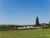 Tehervonat a 27-es vonalon Sóly és Vilonya-Királyszentistván között