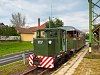 The privately owned C50 3737 is helping out at the Szob Narrow Gauge Railway