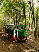 The Nagybörzsöny Forest Railway