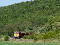 The M�V-TR M62 228 is hauling a loaded lumber train between P�sp�khatvan and Acsa-Erdők�rt