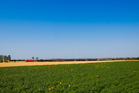 Szergejes teher Hatvanban