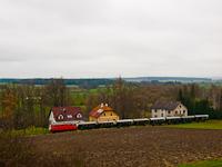 The NÖVOG V12 seen between Dietmanns and Alt Weitra, near the village of Eichberg