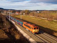 A MÁV-START 418 313 pályaszámú Csörgő Solymár és Üröm között a fölújított 2-es vasútvonalon