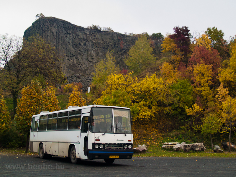 Ikarus 256 picture