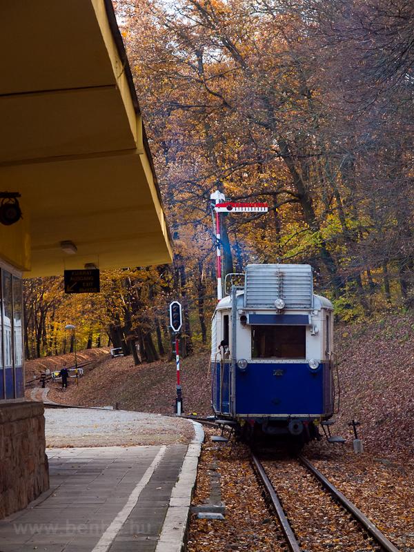The Children's Railway& photo