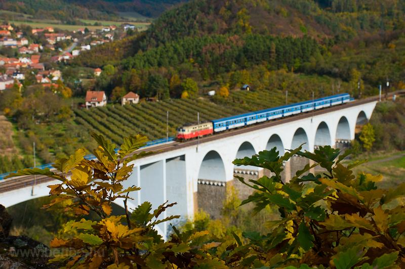A regional train hauled by a Ceské Dráhy Plechác near Dolni Loucky, Czech Republic photo