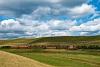 A 478 235 a 81-es vonali tolatós tehervonattal Vizslás és Kisterenye-Bányatelep között