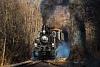A Gyermekvasút 490,039 pályaszámú gőzmozdonya a Budai Parkerdőben, Virágvölgy és Csillebérc állomások között