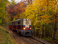The Budapest Children's Railway's Mk45-2003 diesel-hydraulic, remotorised locomotive seen between Hárs-hegy and Hűvösvölgy stations