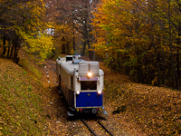 The Budapest Children's Railway's ABamot 2 historic diesel multiple unit seen between Hárs-hegy and Hűvösvölgy stations