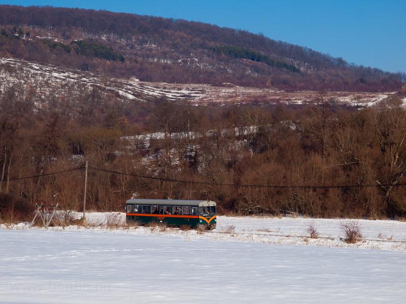 A Királyréti Erdei Vasút M06 401 Paphegy és Szokolya-Riezner között fotó