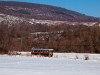 A Királyréti Erdei Vasút M06 401 Paphegy és Szokolya-Riezner között