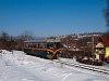 A Királyréti Erdei Vasút M06 401 Szokolya-Mányoki és Hártókút között