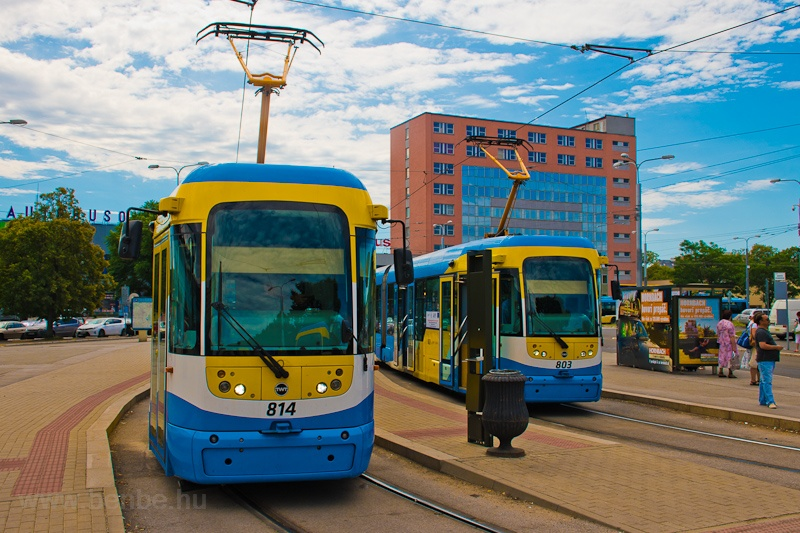 Trams at Košice photo