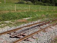 Summer Historic Trains in Slovakia