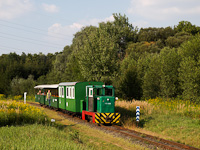 The little train of the Csömödér Narrow-gauge Forest Railway seen with C50-408 at Iklódbördöcei temető
