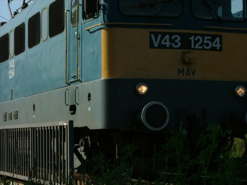 MÁV V43 1254 Városligeti elágazásnál fotó