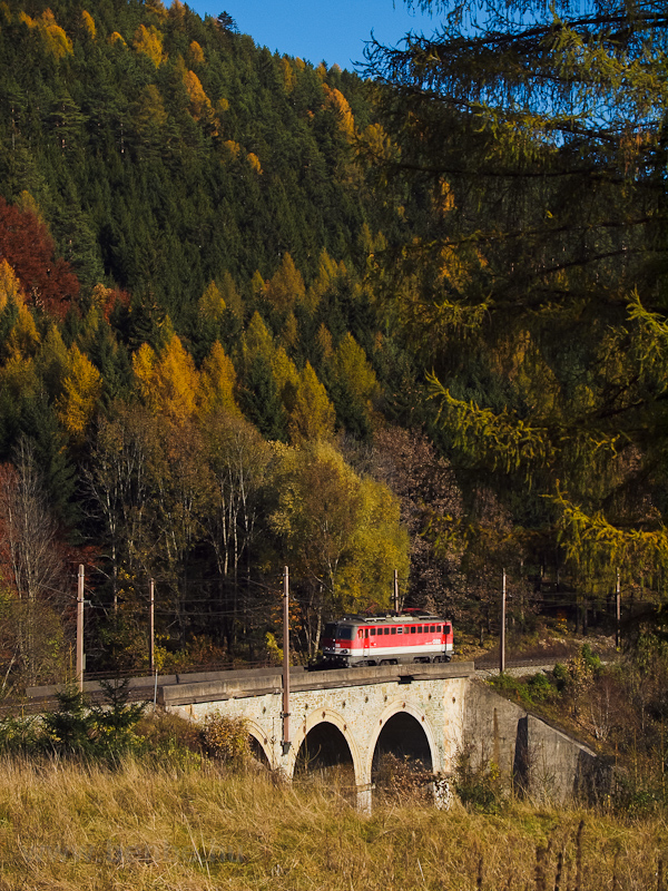 The ÖBB 1142 601 seen betwe picture