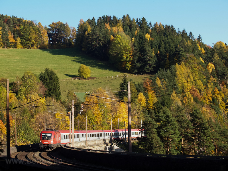 The ÖBB 1116 109 seen betwe photo