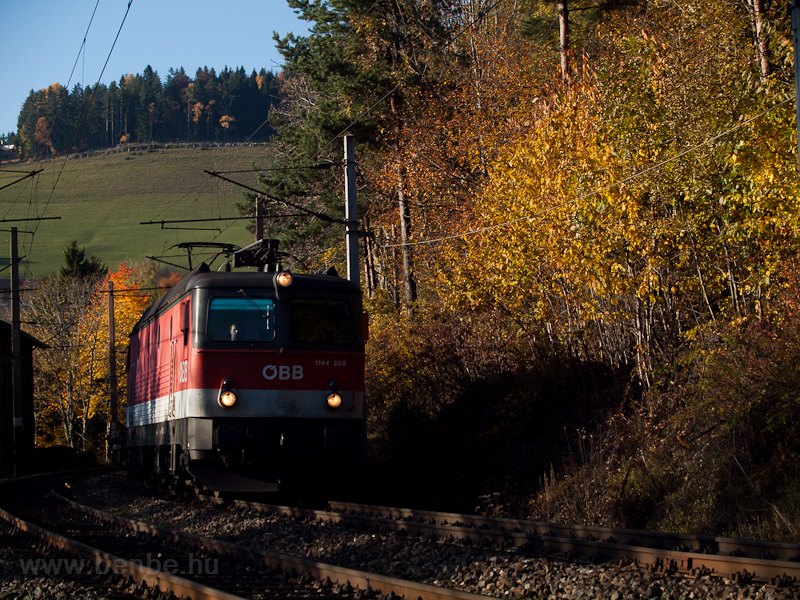 The ÖBB 1144 289 seen betwe photo