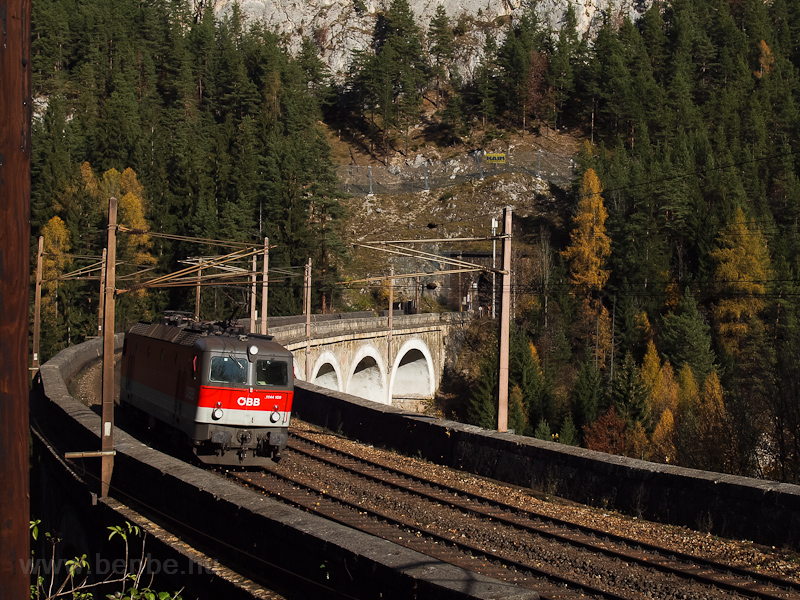 The ÖBB 1144 109 seen betwe photo