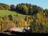 The ÖBB 1116 109 seen between Klamm-Schottwien and Breitenstein