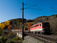 The ÖBB 1142 593 seen between Breitenstein and Klamm-Schottwien