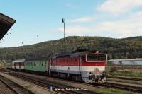 A 754 036-2 pályaszámú, Blonski-festésű Búvár Végles (Víglas) állomáson