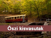 Autumn forest railways