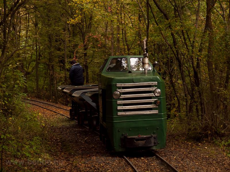 A Kemencei Erdei Múzeumvasút P 2 Strand-Godóvár és Pityur-rétje között zúzottkő-szállító vonattal fotó