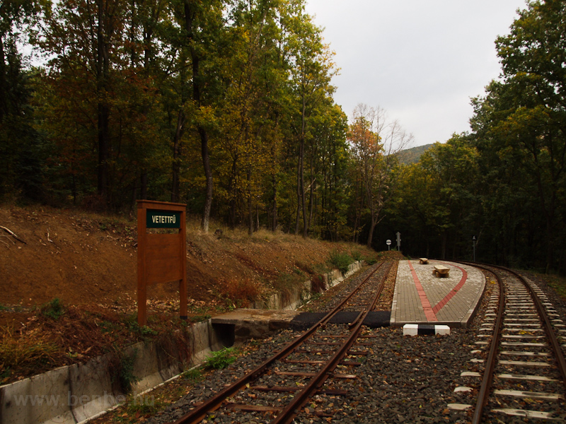 Vetettfű station photo