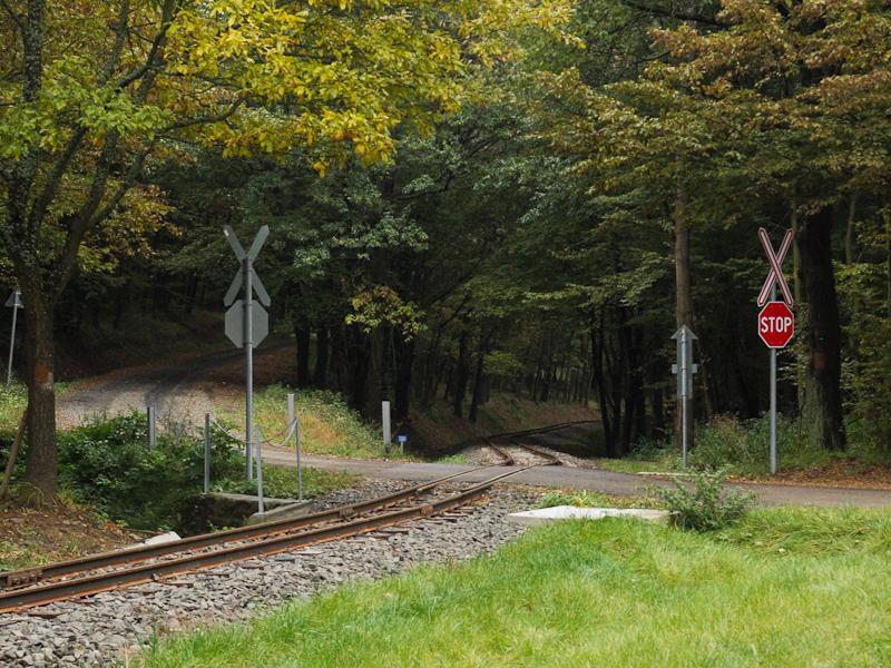 The road-rail level crossin photo