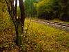 A régi vasút egy talpfája Vetettfű közelében