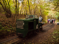 Autumn forest railways