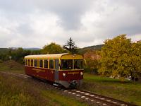 A Nagybörzsönyi Erdei Vasút 8444 001-5 Márianosztra állomáson