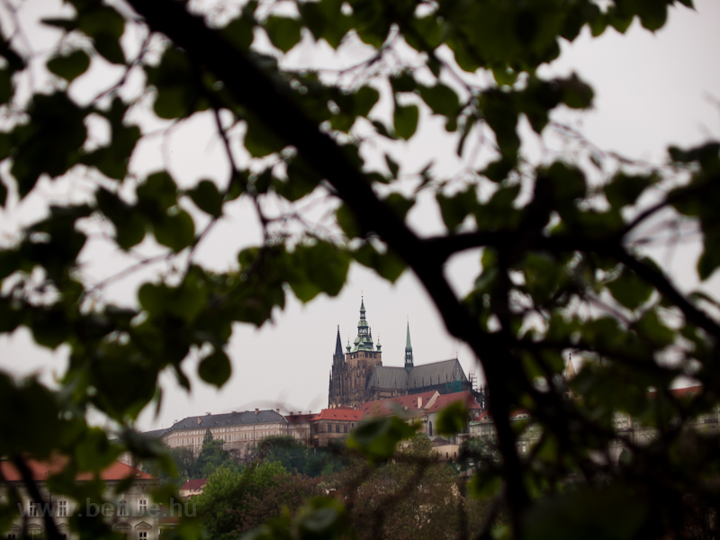 Prague - St. Vitus Cathedral photo
