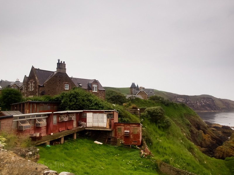 St Abbs picture