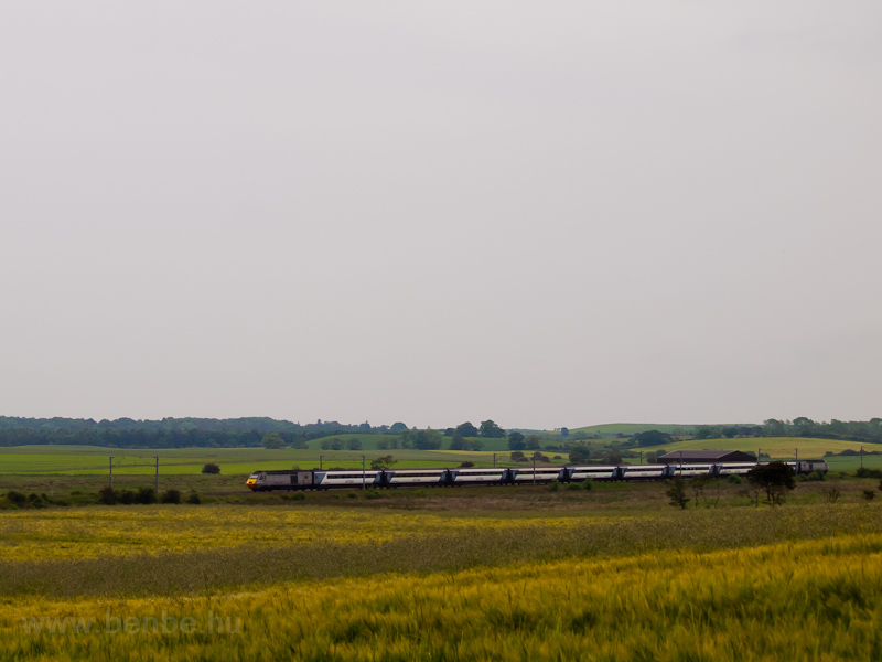 An East Coast IC125 (HST) t photo