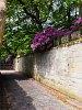 Virágok a skóciai Floors Castle-ben, Kelsoban